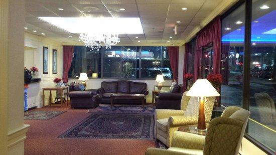 Amsterdam Hotel: Nice lobby