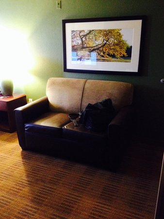 Extended Stay America - Houston - Med. Ctr. - NRG Park - Braeswood Blvd: Sitting area