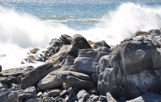 Sachuest Point National Wildlife Refuge: Nature Trail