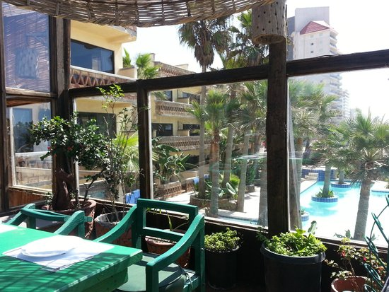 Los Pelicanos Restaurant & Bar : View from outdoor patio to hotel side and pool