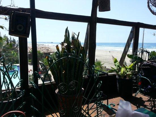 Los Pelicanos Restaurant & Bar : View from patio