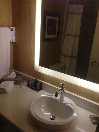 Montreal Marriott Chateau Champlain : Tiny Bathroom