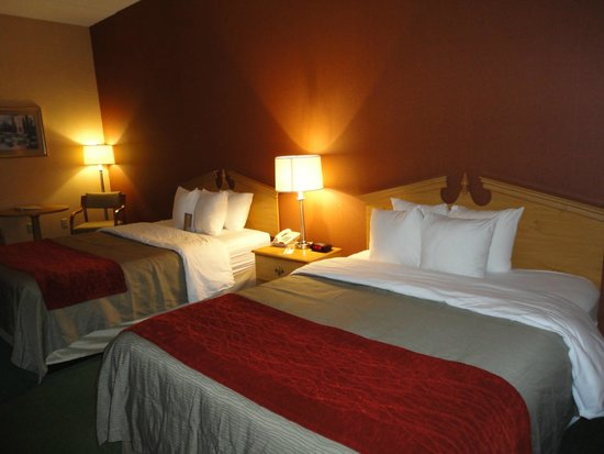Comfort Inn Newport: Queen Beds