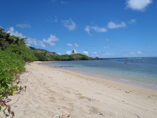 Puu o Hoku Ranch: beach by cottage