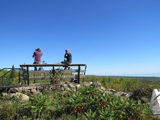 Hawk Ridge Bird Observatory: The Counters
