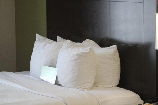 La Quinta Inn & Suites San Diego Old Town / Airport: room