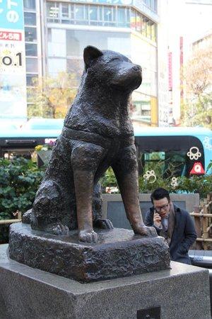 Bronze Statue Of Hachiko Picture Of Hachiko Shibuya