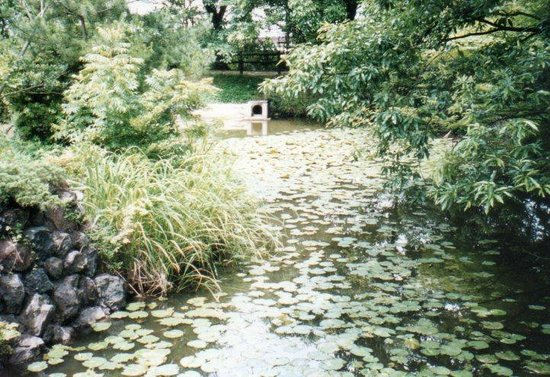 Yashima-ji Temple: 屋島寺 血の池