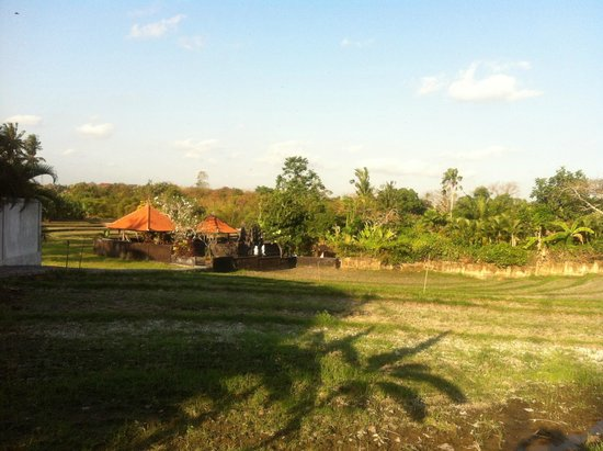 Enigma Bali Villas: Rice field and temple opposite to Enigma Villas