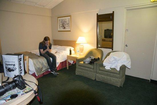 Niagara's Best Inn: Room view 1