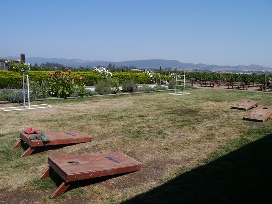 Larson Family Winery : Looking over the lawn where you can play some outdoor games.