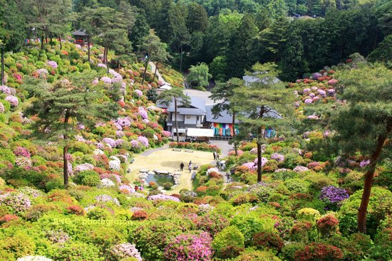 Ome, Japan: View from the hill top