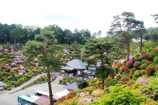 Ome, Japan: Great landscaping of the temple