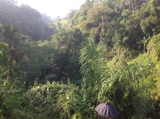 Amori Villas: morning view