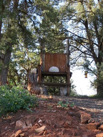 Sedona Dream Maker Bed & Breakfast: Giant chair with a view
