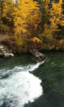 Miles Canyon: Beautiful foliage - 17 Sept 2014