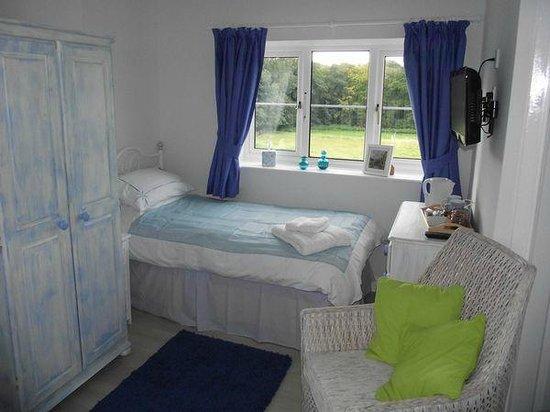 Park View B & B: Twin room