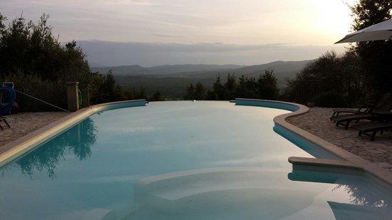 Tenuta il Sassone: Pool view