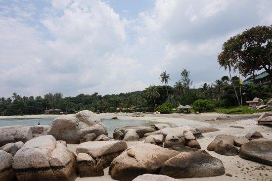 Angsana Bintan : Beach View