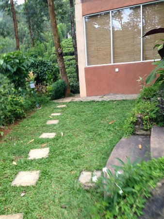 The Tea Cottages Resort & Spa : steps to our room