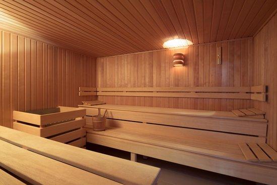 Mercure Hotel Panorama Freiburg: Sauna