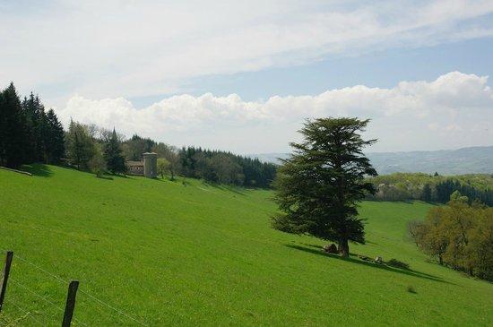 Col de la Luere