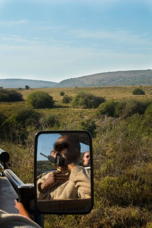 Amakhala Game Reserve: Ranger en leeuwin