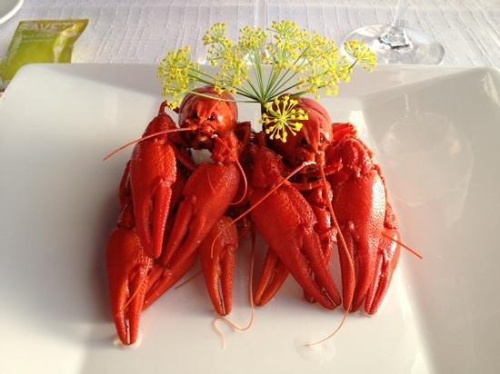 Ravintola Uleaborg 1881 : succulent crayfish