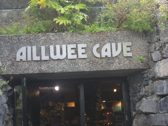 Healy Tours : aillwee cave