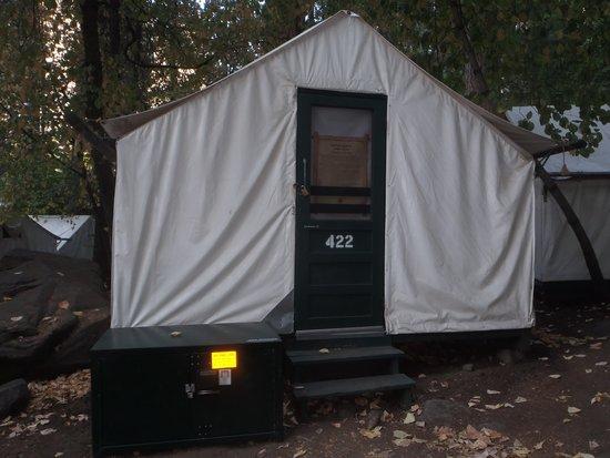 Curry village picture of half dome village yosemite for Half dome tent cabins