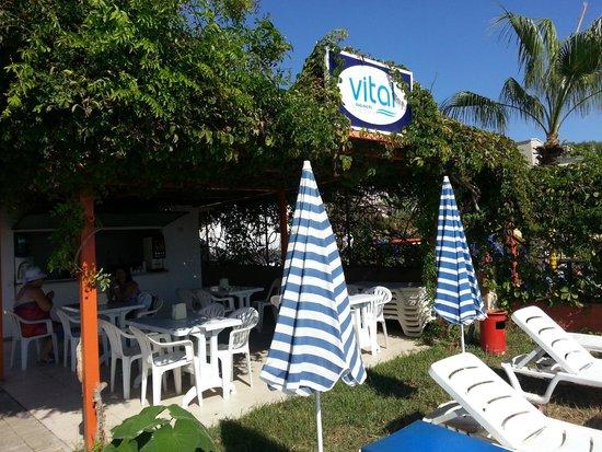 Vital Beach Hotel: beach bar