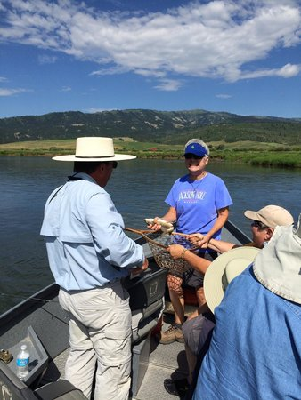 Lubang Jackson, WY: Dave taking photo of 1 of 16 fish count
