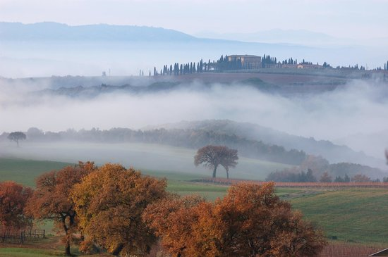 Montalcino, Italien: View from the Mate Winery