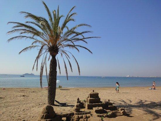 Hotel Marian Platja: Palmier sur la plage