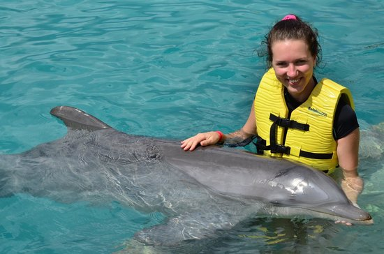 Dolphinaris Cozumel: Swim and Ride