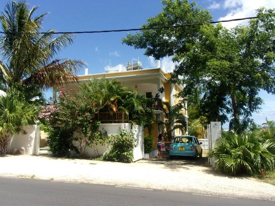 Pingo Studios : View from street