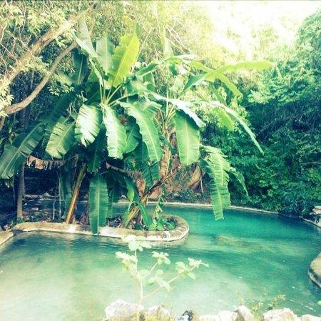 Los Manantiales: Un oasis natural