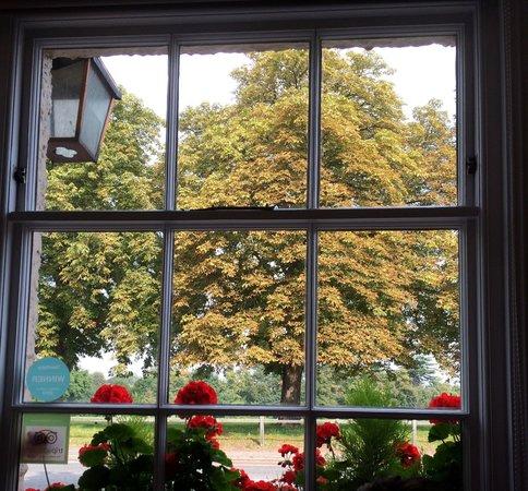 All Seasons Restaurant & Inn: View from front restaurant window