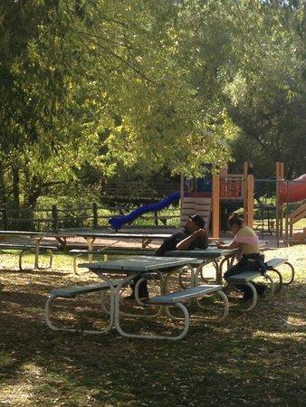 Tiny Town: picnic area