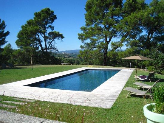Le Mas del Sol : The pool