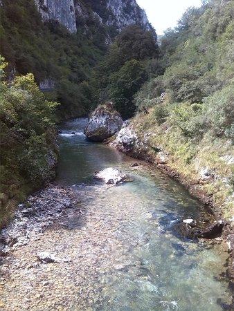 River Cares
