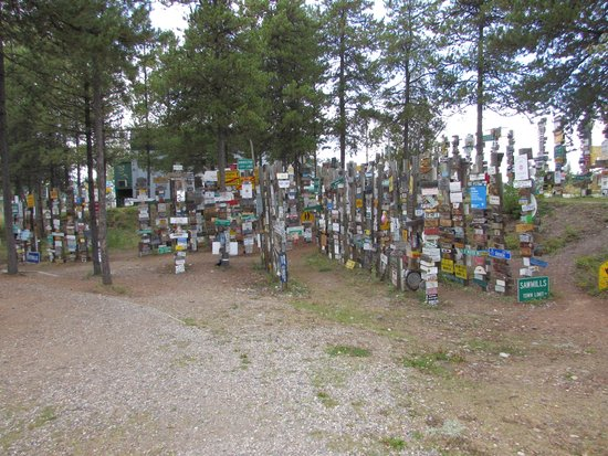 Sign Post Forest : This place is HUGE!