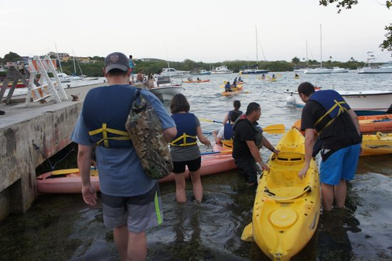 Bio Bay Kayaking: other participants getting on the kayak