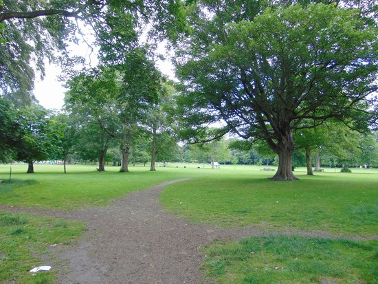 Manor Heath and Jungle Experience: The Park