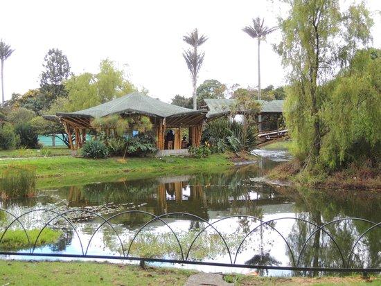 Entrada Photo De Jardin Botanico De Bogota Jose Celestino Mutis Bogota Tripadvisor