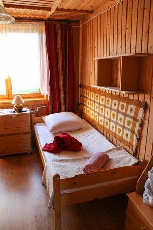 Villa Karpatia: Room