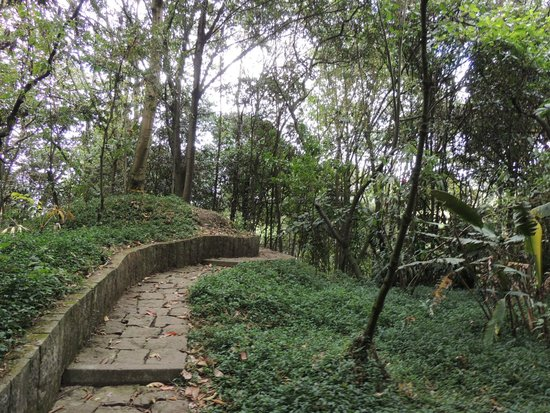 jardin botanico de bogota jose celestino mutis camino a la cascada
