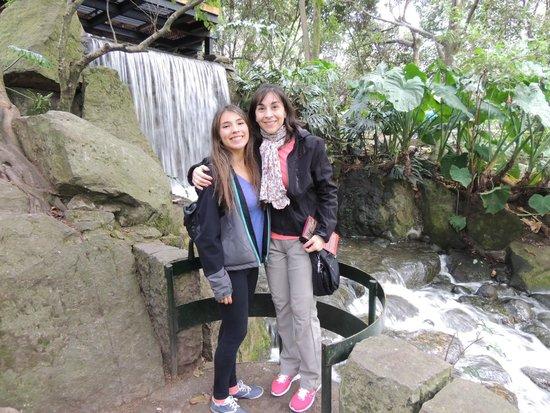 jardin botanico de bogota jose celestino mutis cascada