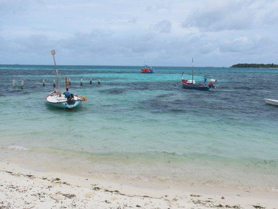 Sun Suites Maldives : Amazing water colours...