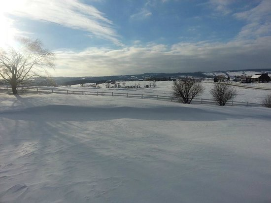 Mountain Ash Farm : Winter view